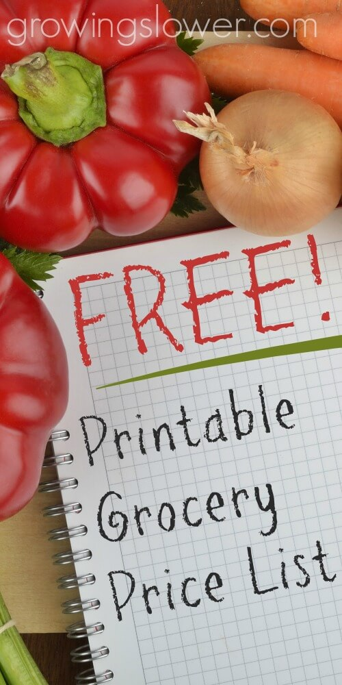 Download this free grocery price book printable template, so you can get on your way to big grocery savings! Using a grocery price list is one of my favorite money saving ideas that helped me cut my grocery budget in half and become debt free!