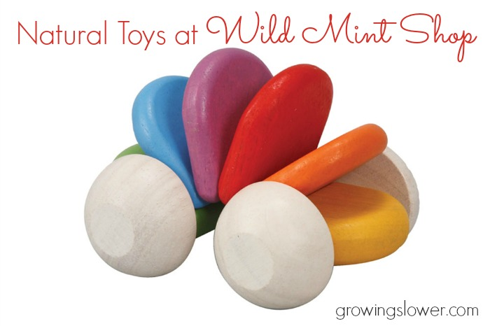 Gift Ideas for a Natural Minimalist Toybox