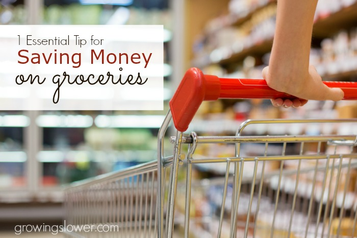 1 Essential Tip for Saving Money on Groceries