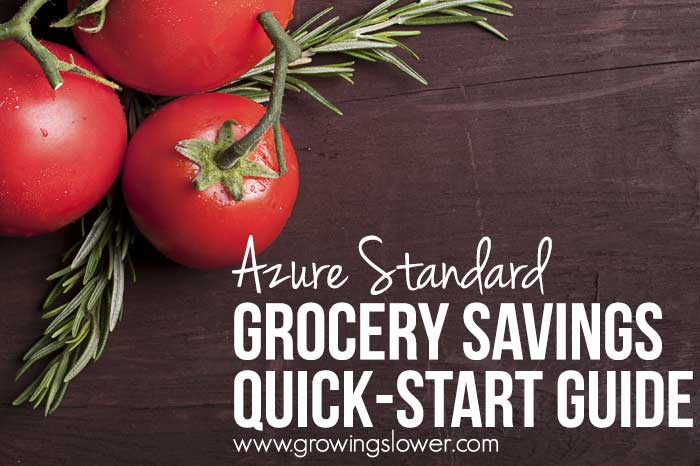 How to Save 50-75% on Organic Groceries with Azure Standard