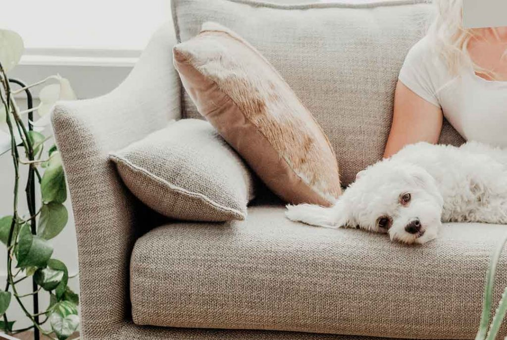 Your couch cushions...not a good place to stash your cash. But where should you park your emergency fund? And how many bank accounts do you need? That's what we'll cover in today's post.